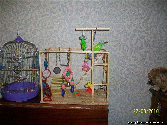 Игрушка для попугая своими руками фото